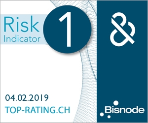 Bisnode D&B Risk Indicator 1 - Computer Controls 2019